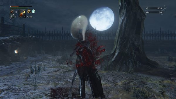 Bloodborne® The Old Hunters Edition_20160425051608